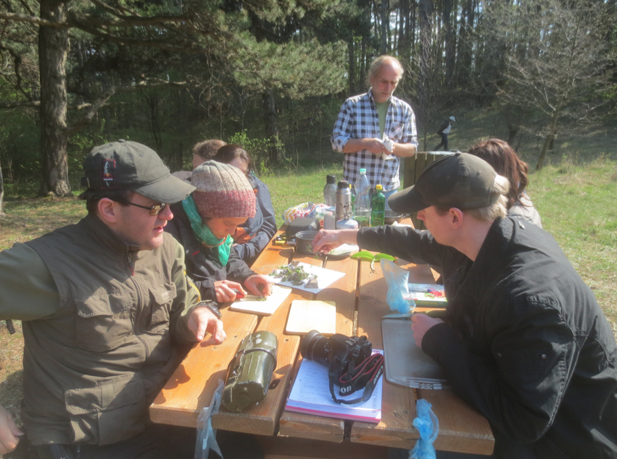Kräuterwanderung April 2015