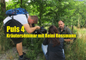 Sat1Puls4 TV: Kräuterwanderung Wien mit Reini Rossmann